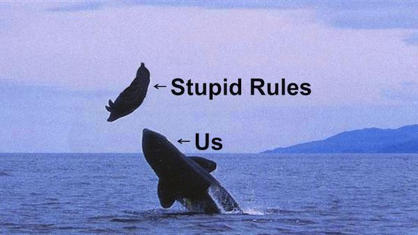 us-stupid-rules